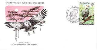 World Wildlife Fund First Day Cover - The Gambia - The Lizard Buzzard - No 98 photo