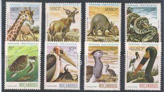 Mozambique 1981 Animais Protegidos 8 Valores Serie Completa Selos Novos photo