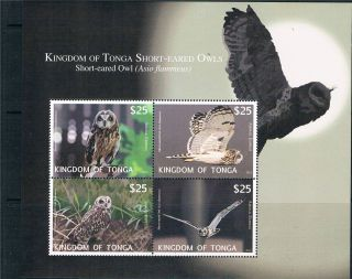Tonga 2012 Owls Airmail Express Ms Issue photo