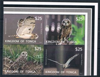 Tonga 2012 Owls Airmail Express Blk 4 Issue photo
