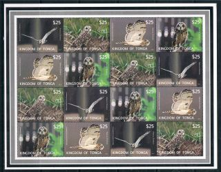 Tonga 2012 Owls Airmail Express Sheet Issue photo