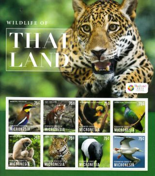 Micronesia 2013 Wildlife Of Thailand 8v M/s Birds Leopard Dhole Tapir Gibbon photo