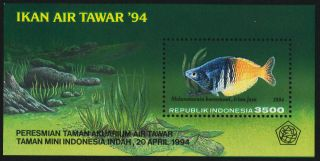 Indonesia 1575 Fish photo