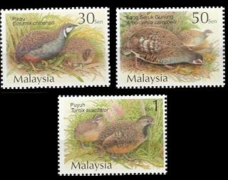 Quails & Partridges Malaysia 2001 Animal Pets Farms (stamp) photo