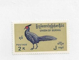 Burma 207 photo