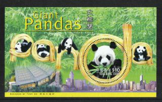 Hong Kong 1999 Giant Pandas Ss - - Attractive Animal/conservation Topical (843) photo