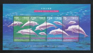 Hong Kong 1999 Chinese White Dolphins Ss - - Attractive Animal Topical (879) photo
