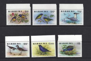 Barbuda 238 - 243 photo