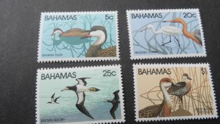 Bahamas 19781 Sg 589 - 592 Wildlife (1st Series). photo