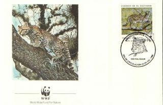 (23991) Fdc - El Savador - Tigrillo (tiger Cat) - 1988 photo