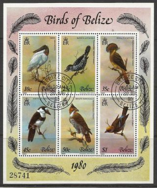 Belize.  1980.  Birds Miniature Sheet.  Sg: Ms567.  Fine. photo