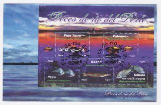 Peru 2007 Fish From Peru Fdc photo
