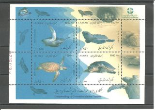 Iran 2009 Conserve Marine Turtles photo