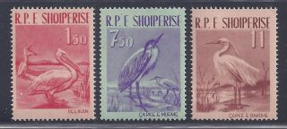 Albania Fauna 1961 Mi.  630 - 32 Og Vf (a861). photo