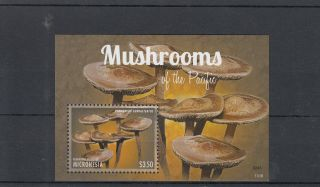 Micronesia 2013 Mushrooms Of Pacific I 1v S/s Nature Panaeolus photo