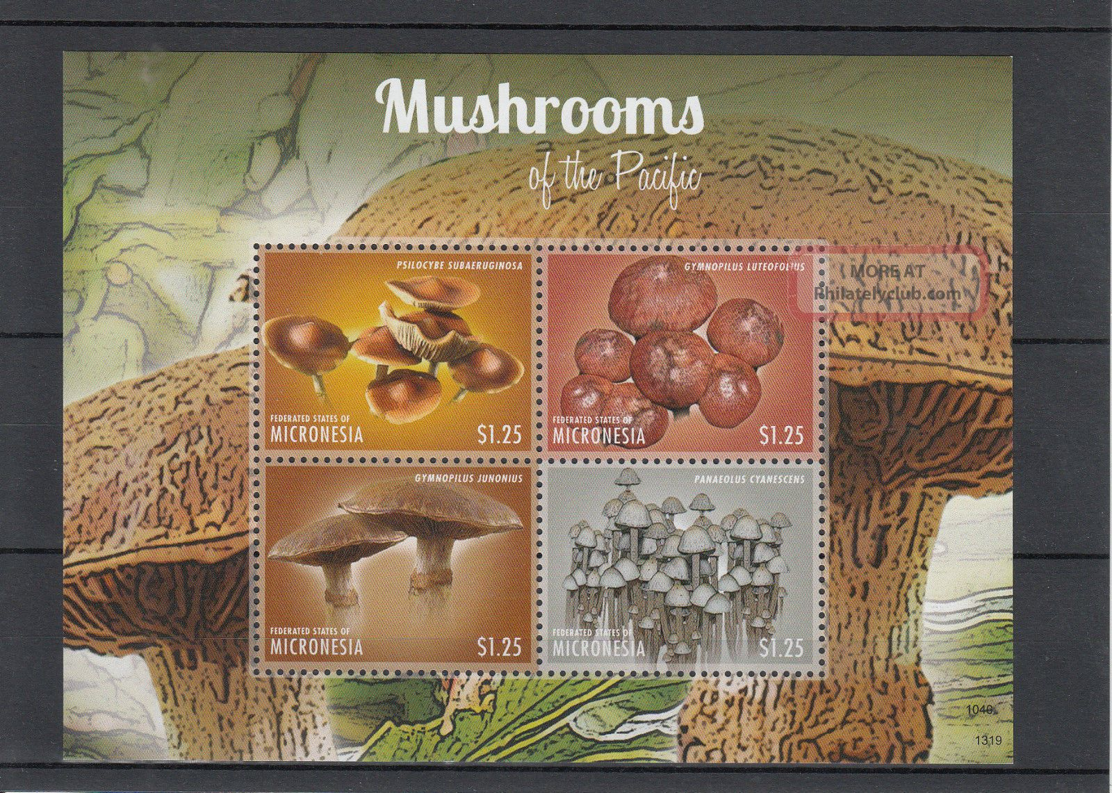 Micronesia 2013 Mushrooms Of Pacific Ii 4v M/s Nature Gymnopilus Psilocybe Topical Stamps photo