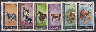 Mauritania - 1968 Farm Animal Mlh - Vf 353 - 8 photo