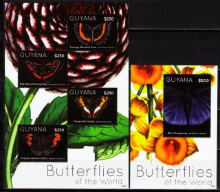 Guyana 2012 Butterflies I 1 Ms Of 4 Different + 1 Ss photo