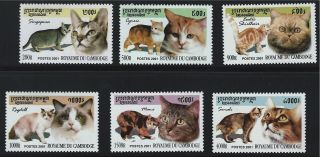 Camboda Sc2122 - 2126 Lovely Cats - Singapur - Exoticshorthairragdoll Etc.  2001 photo