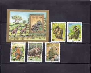 Benin 1995 Primates Scott 755 - 60 Cancelled photo