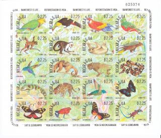 Nicaragua 1991 Fauna Of Rainforest Full Sheet (of 20) (sc 1861) photo