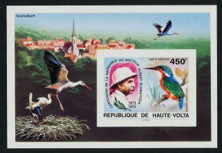 Upper Volta C215 Imperf Albert Schweitzer,  Birds photo