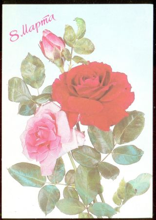 Russia / Ussr,  1987,  Women`s Day Greeting Post Card, photo