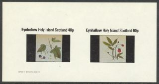 Eynhallow (br.  Local) 1982 Fruits Berries Sheet Of 2 Imperf.  Ne023 photo