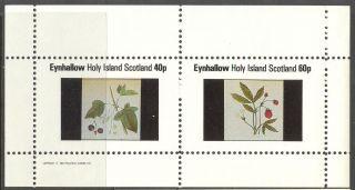 Eynhallow (br.  Local) 1982 Fruits Berries Sheet Of 2 Ne024 photo