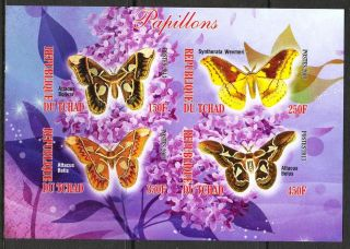 2013 Butterflies I Imperf.  Sheet Of 4 5t I 001 photo