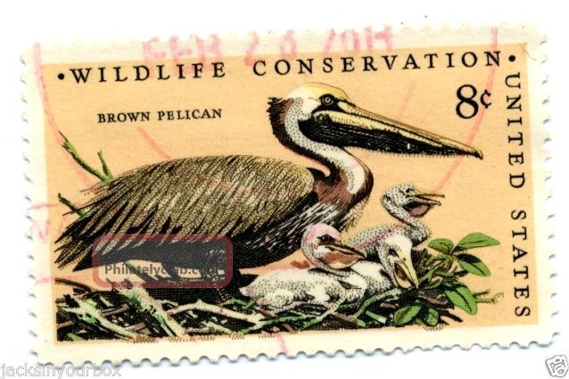 1464.  7 Single,  Wildlife Conservation Brown Pelican,  Yr 1972,  8 Ct Postmark, United States photo