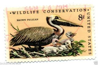 1464.  7 Single,  Wildlife Conservation Brown Pelican,  Yr 1972,  8 Ct Postmark, photo