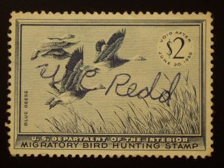 U S 1 Signed Hunting Permit Stamp S C Rw 22 photo