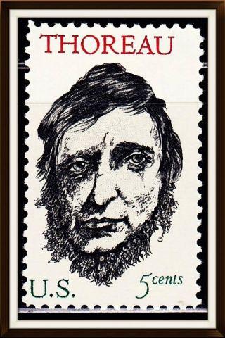 Us Single Stamp Scott 1327 photo
