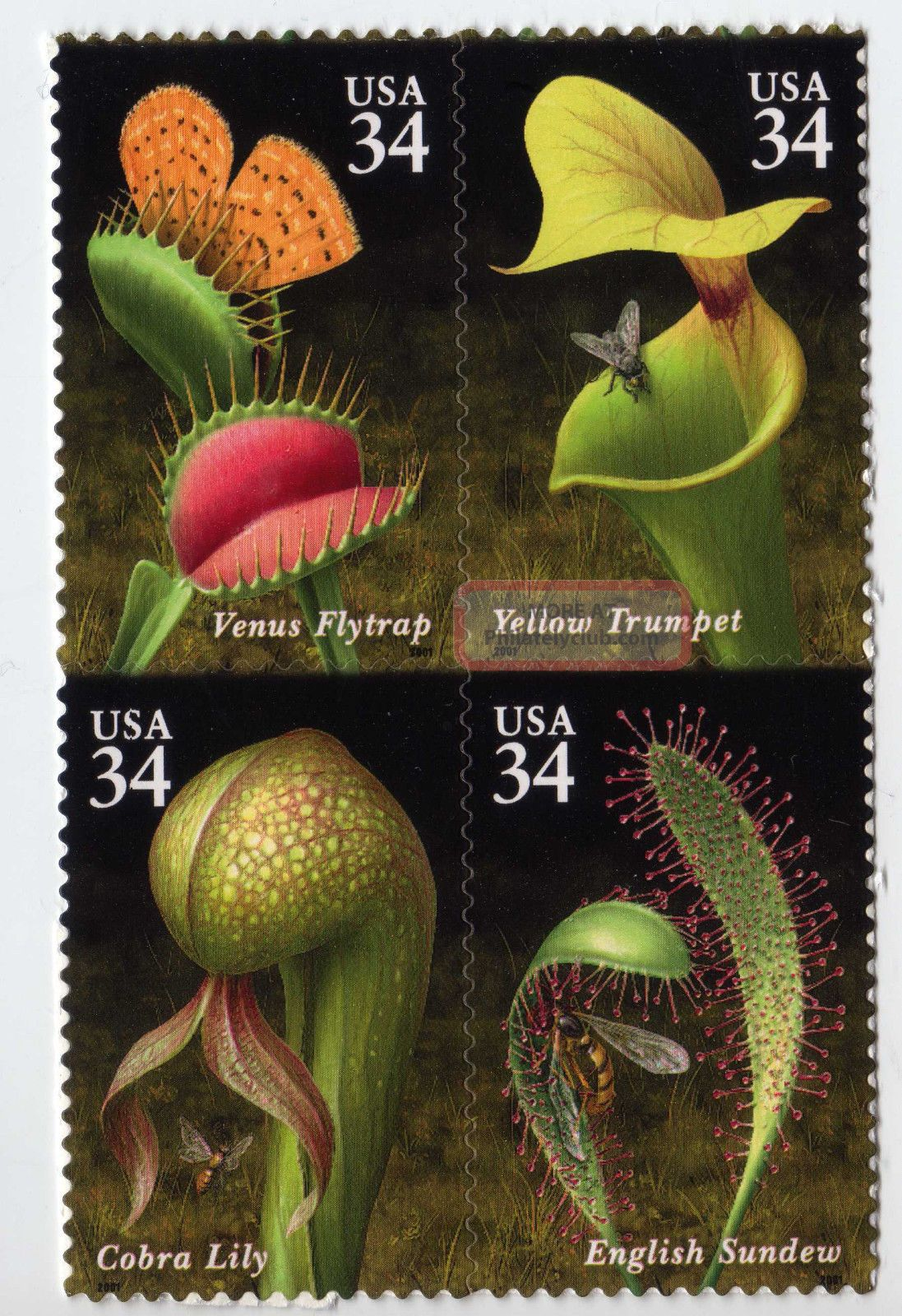 005 Us Stamp Scott 3528 - 3531 34¢ Carnivorous Plants Block Of 4 United States photo