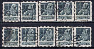 Canada 335 (11) 1954 4 Cent Gray Canadian Wildlife Walrus 10 photo