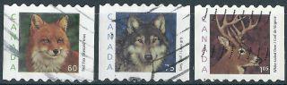 Canada.  2000. .  Wild Abimals.  (3483) photo