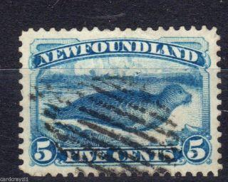 Newfoundland.  Sg59a. .  Cat V£4.  75. photo