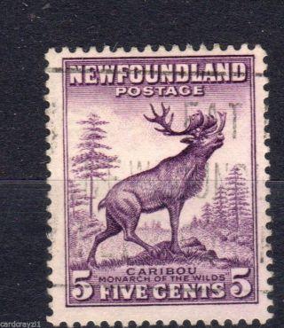Newfoundland.  Sg213.  Vfu.  Cat £5.  50. photo