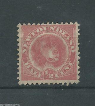 Newfoundland - 1896 To 1898 - Sg62 - Cv £ 55.  00 - Vf photo