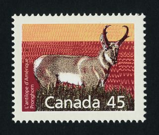 Canada 1172 Animal,  Pronghorn photo