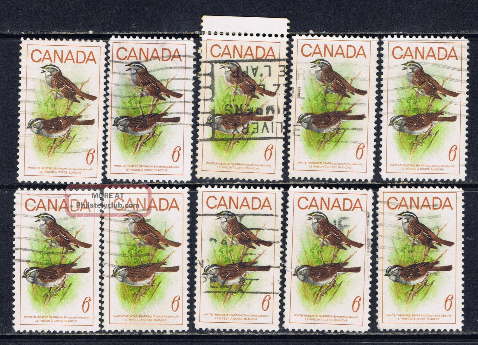 Canada 496 (1) 1969 6 Cent Canadian Birds - White - Throated Sparrow 10 Canada photo