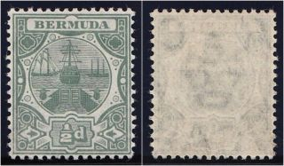 Bermuda 1906 Kevii ½d Green.  Sg 36.  Sc 33. photo
