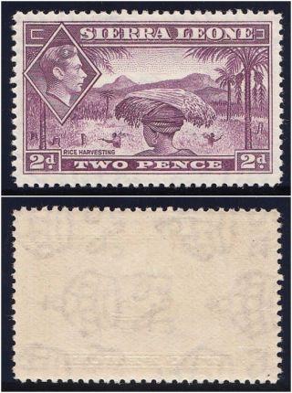 Sierra Leone 1938 Kgvi 2d Mauve.  Sg 191.  Sc 176. photo