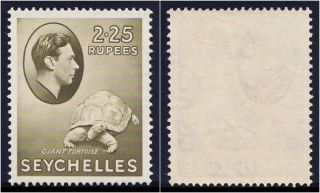 Seychelles 1938 Kgvi 2r25 Olive.  Sg 148.  Sc 147. photo