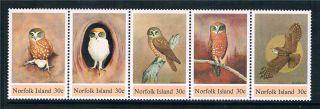Norfolk Is 1984 Boobook Owls Sg 338/42 photo