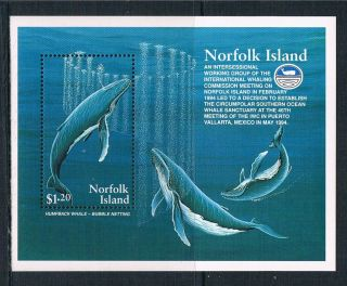 Norfolk Is 1995 Humpback Whales Sg Ms 590 photo