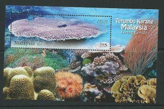 Malaysia 2013 Corals M/sheet photo