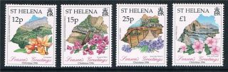 St.  Helena 1996 Christmas Flowers Sg730/33 photo