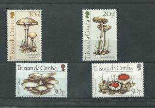 Tristan Da Cunha - 1984 - Sg369 To Sg372 - Cv £ 1.  70 - Unmounted photo